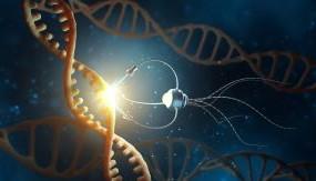 Nanoscience and Technology - Micro Master