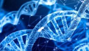 Data Analysis for Genomics by Harvard - Certification