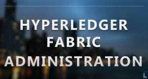 Hyperledger Fabric Administration (LFS272)