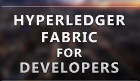 Hyperledger Fabric for Developers (LFD272)