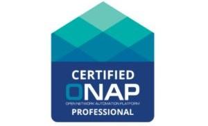 Certified ONAP Professional (COP) - Certification Exam